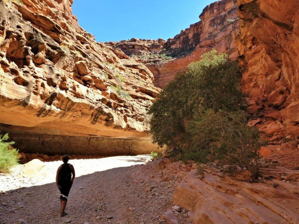 Havasu Falls Trail Grand Canyon